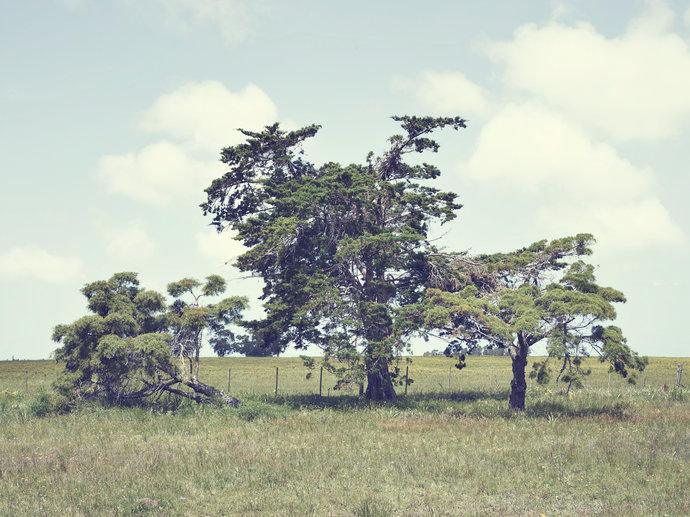 GQ Uruguay par Yoann Stoeckel